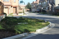 Street end used for bioretention, Paulson Lane, Walnut Creek