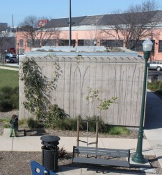 Green roof on restroom, Doyle Hollis Park, Emeryville
